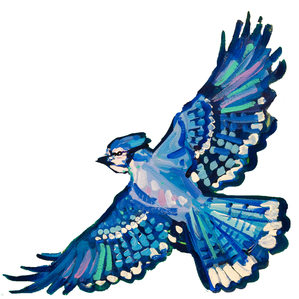 Blue bird flying medium